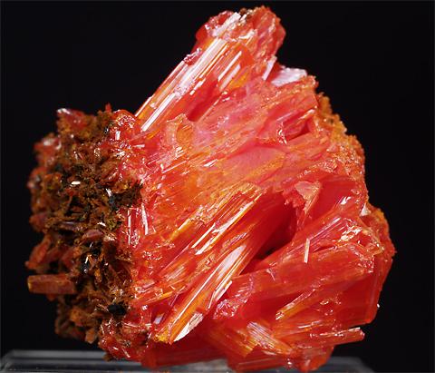 紅鉛鉱 Crocoite 鉱物たちの庭